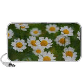 Daisies Notebook Speaker
