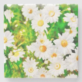 Daisies Stone Coaster