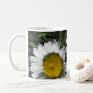 Daisiess on a Cup