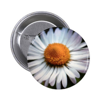 Daisy 1 Button