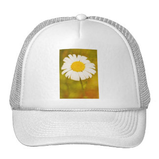 daisy and the lonely summer trucker hat