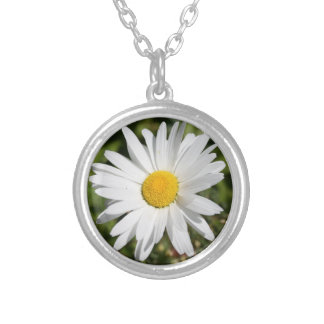 Daisy April birth month flower Silver Plated Necklace