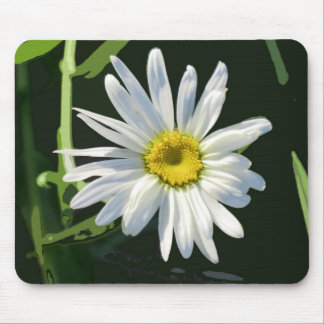 Daisy Art on Mouse Pad