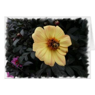 Daisy Bee card