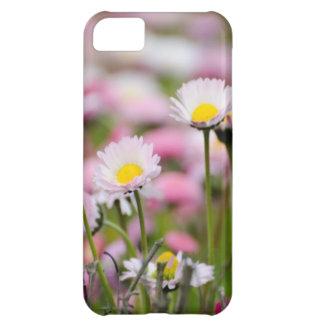 Daisy Blossoms Elegant Romantic Wedding Parties iPhone 5C Case