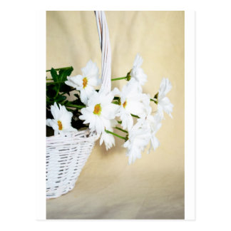 Daisy Blossoms Flowers and Wicker Basket Postcards
