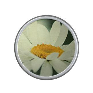 Daisy Bluetooth Speaker