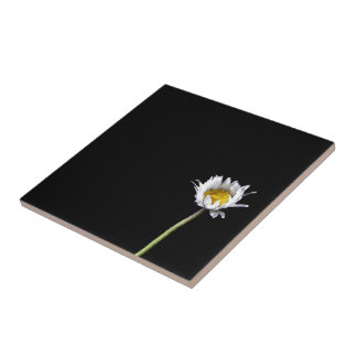 Daisy Ceramic Tile