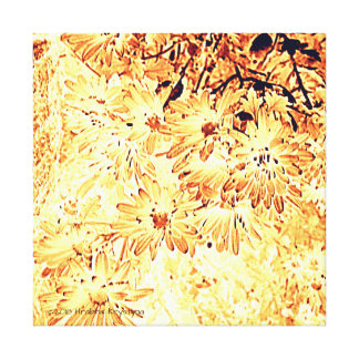 DAISY COMPOSITION IN PEACH AND RUST CANVAS PRINT