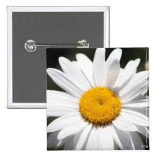 Daisy Darling 15 Cm Square Badge