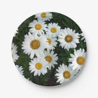 Daisy Delight Paper Plates