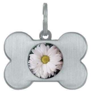 *Daisy* Dog Collar Tag