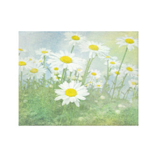 Daisy Dream Stretched Canvas Print