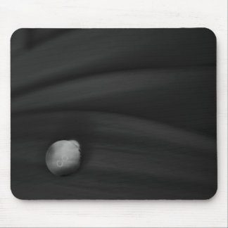 Daisy Droplet Series black white Mouse Pad