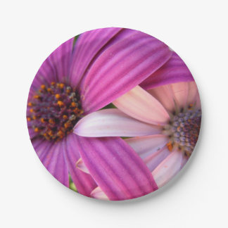 Daisy Duo Paper Plate