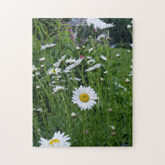 daisy field dreams jigsaw puzzle