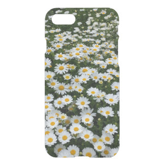 Daisy Field iPhone 7 Clear Case