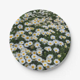 Daisy Field Paper Plates