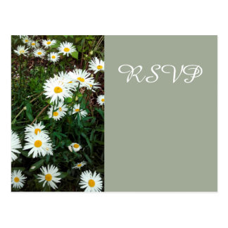 Daisy Floral wedding theme RSVP card Postcard