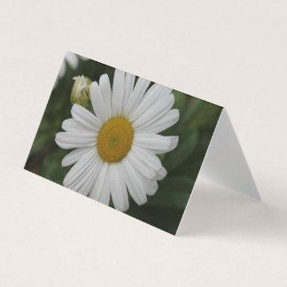 Daisy Flower Cards