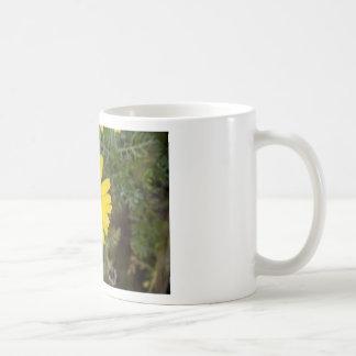 Daisy flower cu yellow coffee mug