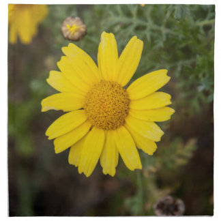 Daisy flower cu yellow napkin