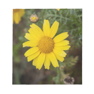 Daisy flower cu yellow notepad