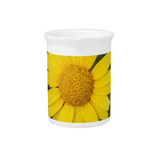 Daisy flower cu yellow pitcher