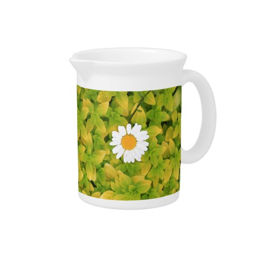 Daisy Flower Reaching For The Sun Beverage Pitcher