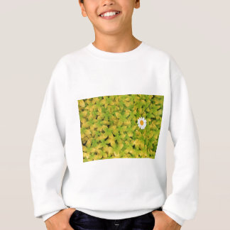 Daisy Flower Reaching For The Sun Sweatshirt