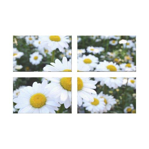 Daisy Garden Canvas Print Quad