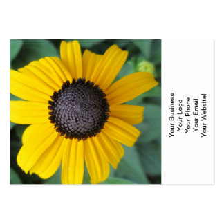 Daisy Garden Flower Gloriosa Business Card