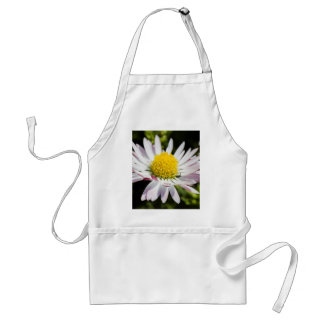 daisy in spring apron