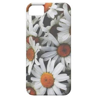 Daisy Iphone 5/5S Case