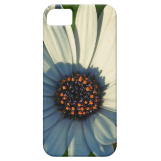 Daisy iPhone-5 Case-Mate  Barely There Universal iPhone 5 Cover