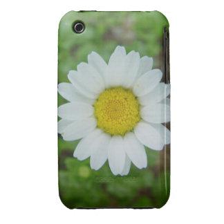 Daisy Ipod iPhone 3 Case