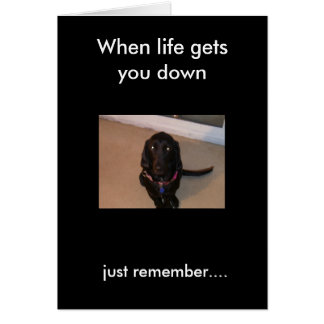 daisy, just remember...., When life gets you down Card