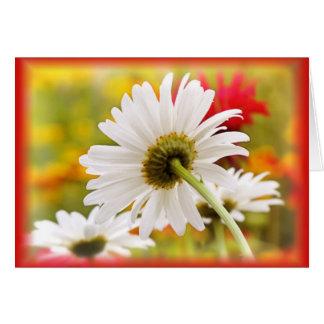 Daisy Light Card