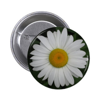 Daisy May Queen Close 6 Cm Round Badge