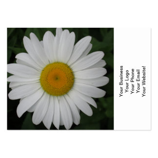 Daisy May Queen Close Pack Of Chubby Business Cards