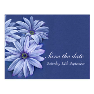 Daisy osteospermum wedding save the date card post cards