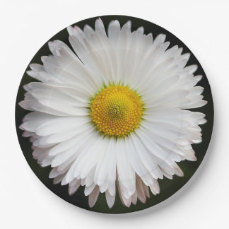 Daisy Paper Plate