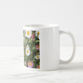 Daisy photo Flower photograph Floral design Mug