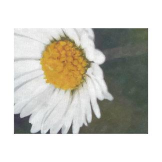 Daisy photography art canvas gallery wrap canvas