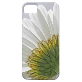 Daisy Picture iPhone 5 Case