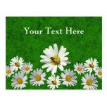 Daisy postcard template