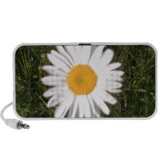 Daisy Print Notebook Speaker