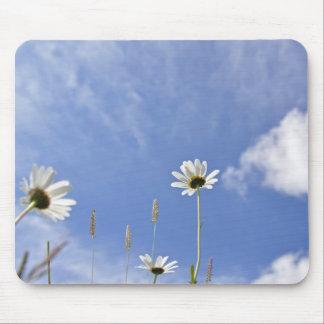 Daisy sky mouse pad