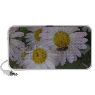 daisy sound iPod speaker