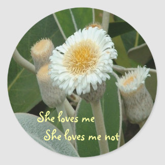 Daisy Round Stickers